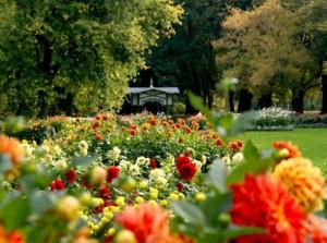 http://greensector.ru/wp-content/uploads/2011/09/osennie_raboti_v_sadu-300x223.jpg