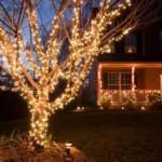 Украшение сада и дома к новому году