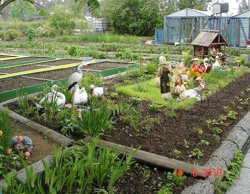 Канал огород своими руками