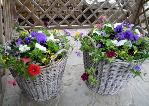 Красивое кашпо своими руками для цветов