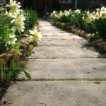Заливка садовых дорожек с помощью готовых форм своими руками