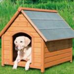 Будки для собак: разнообразие вариантов и строительство своими руками