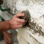 Как бороться с плесенью и грибком на стенах в доме или квартире?