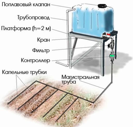 Как сделать капельный полив на даче фото 142