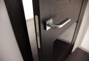 межкомнатные двери в интерьере выбор варианты дизайна и фото