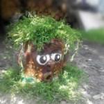 Мастер-класс: делаем садовое кашпо «сказочный пень» из цемента и бутылок