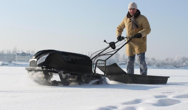 Снегоход собака фото