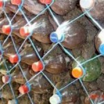 Строим забор из пластиковых бутылок