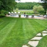 Как и чем удобрять газон?