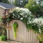 Как украсить забор на даче своими руками?