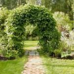 Садовые арки — виды, способы создания и оформления своими руками
