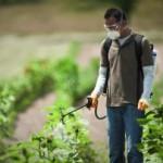 Опрыскиватели для сада и огорода: изучаем виды и характеристики