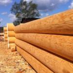 Стоит ли строить дом из лиственницы: плюсы и минусы материала