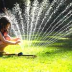 Как выбрать дождеватель для полива: типы и характеристики устройств