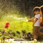Какие шланги для полива лучше: виды и особенности выбора
